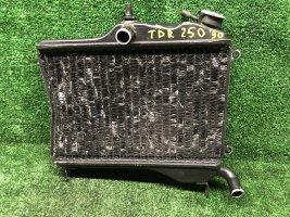 Радиатор Yamaha TDR250 TDR 250